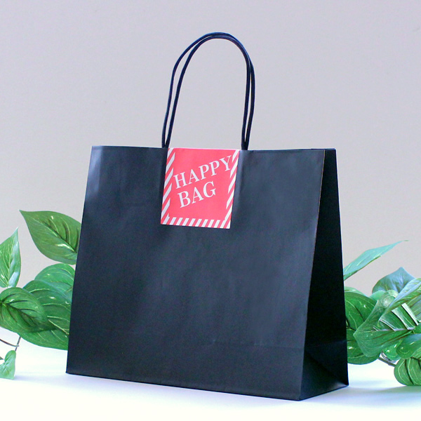 ハッピーバッグ 福袋の袋